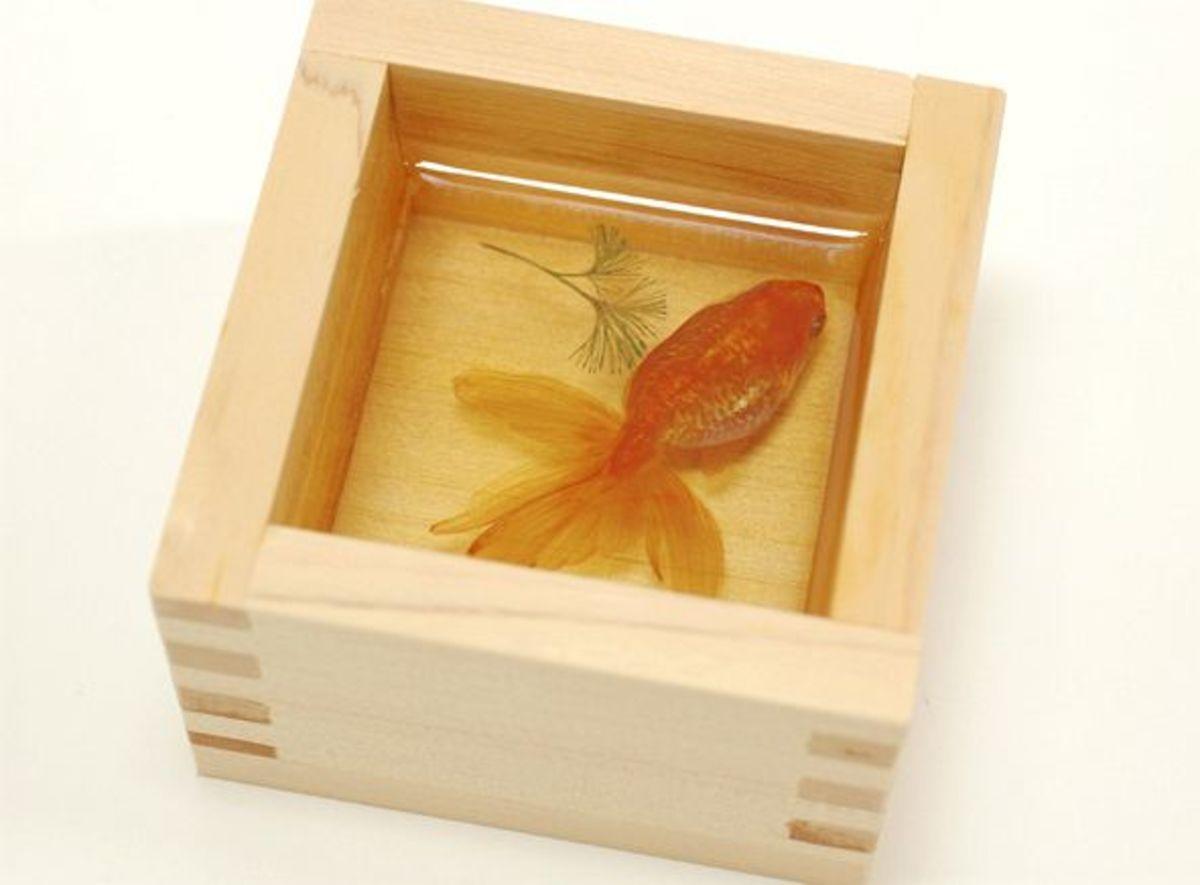 Goldfish in Sake Case (2003)