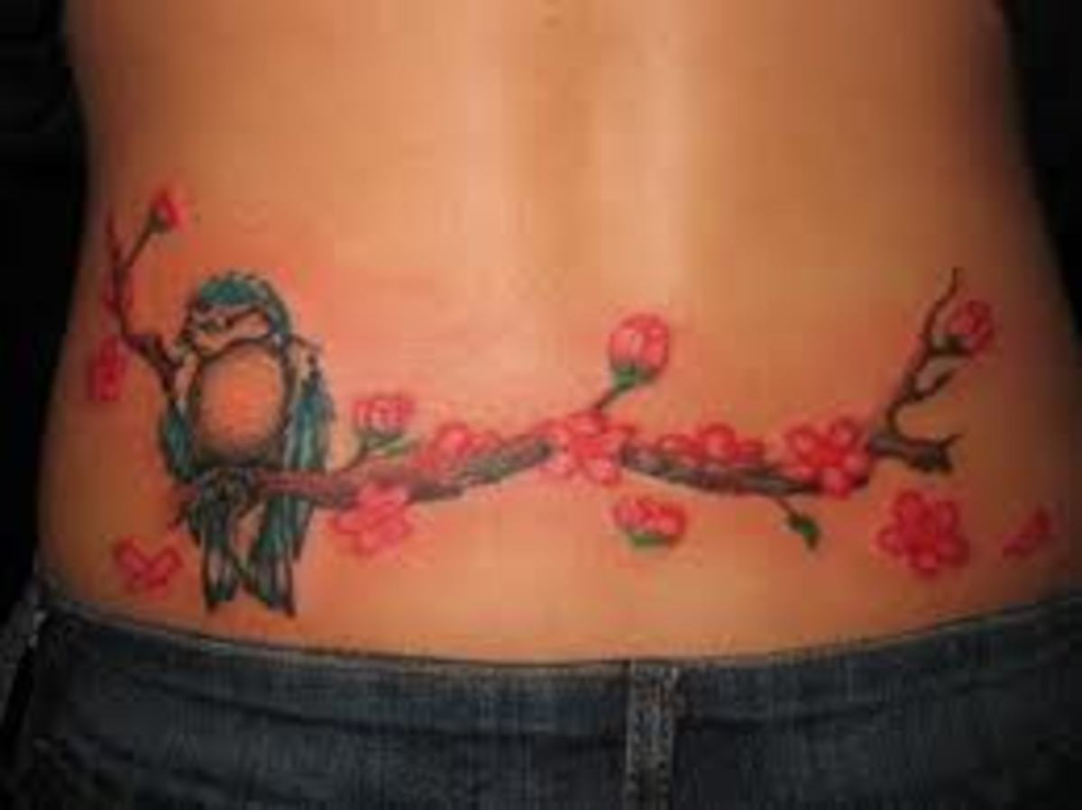 Cherry blossom and bluejay lower back tattoo design