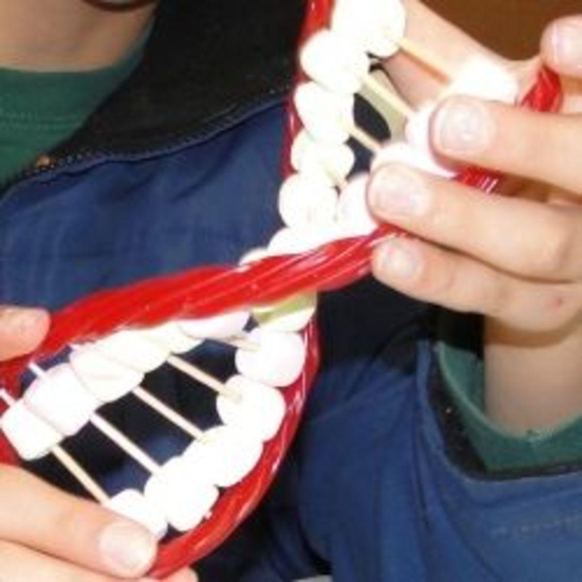 Edible DNA Model