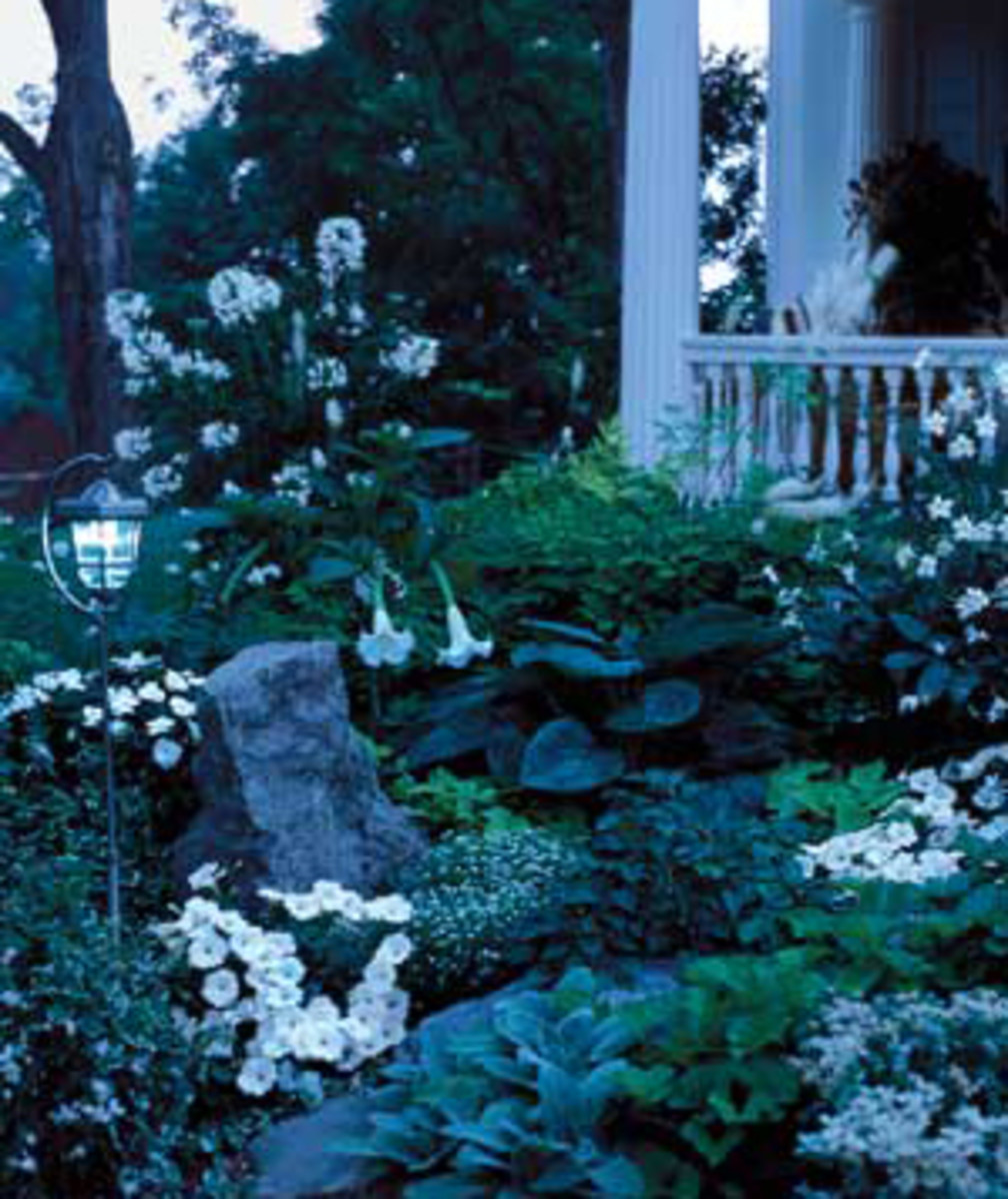 How to Create a Moonlight Garden