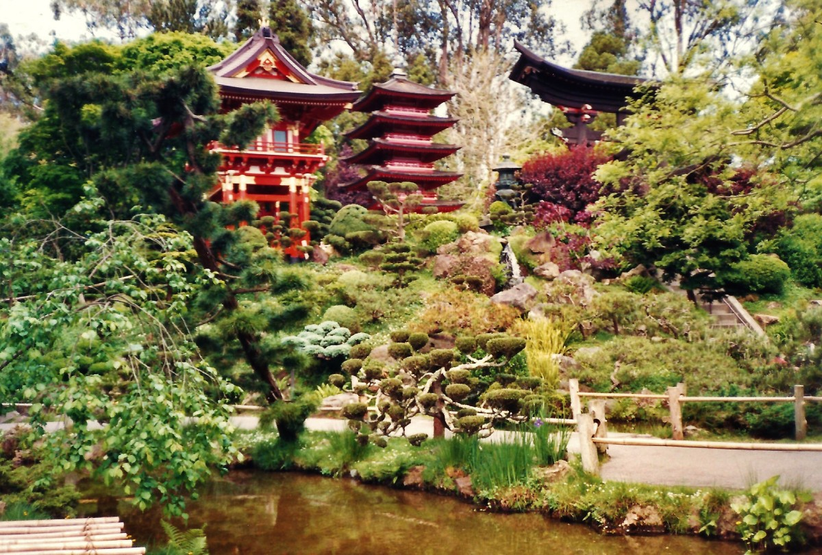 Japanese Tea Garden in Golden Gate Park