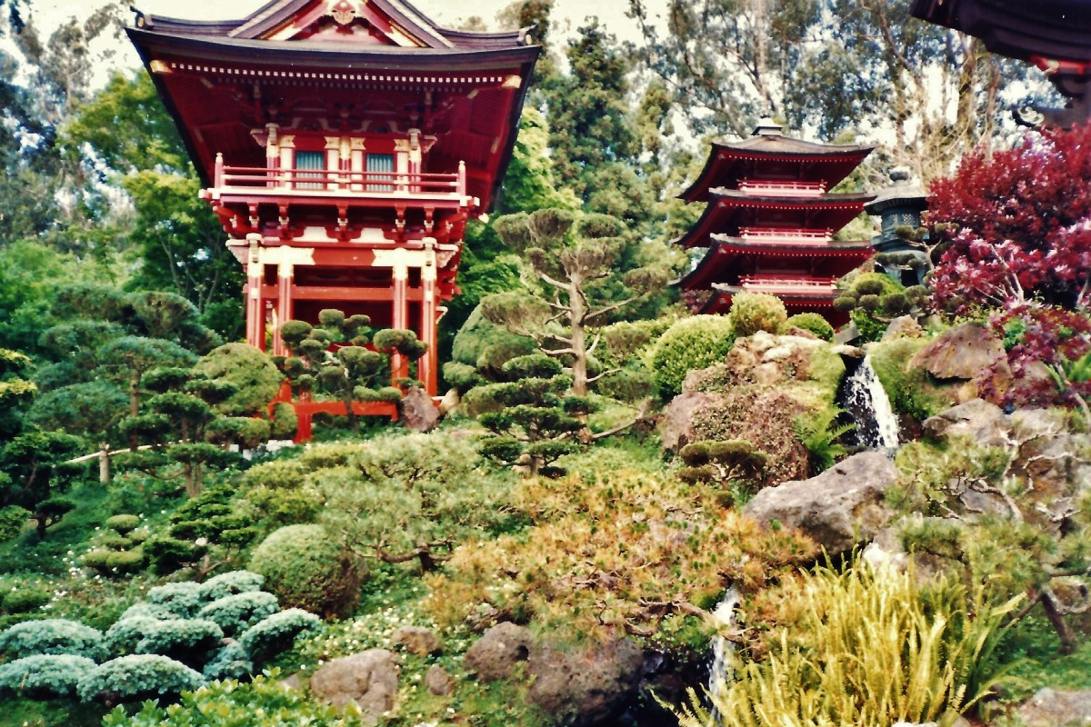 Golden Gate Park: Japanese Tea Garden, Museums, Something for Everyone!