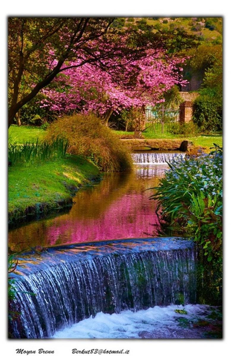 a great garden