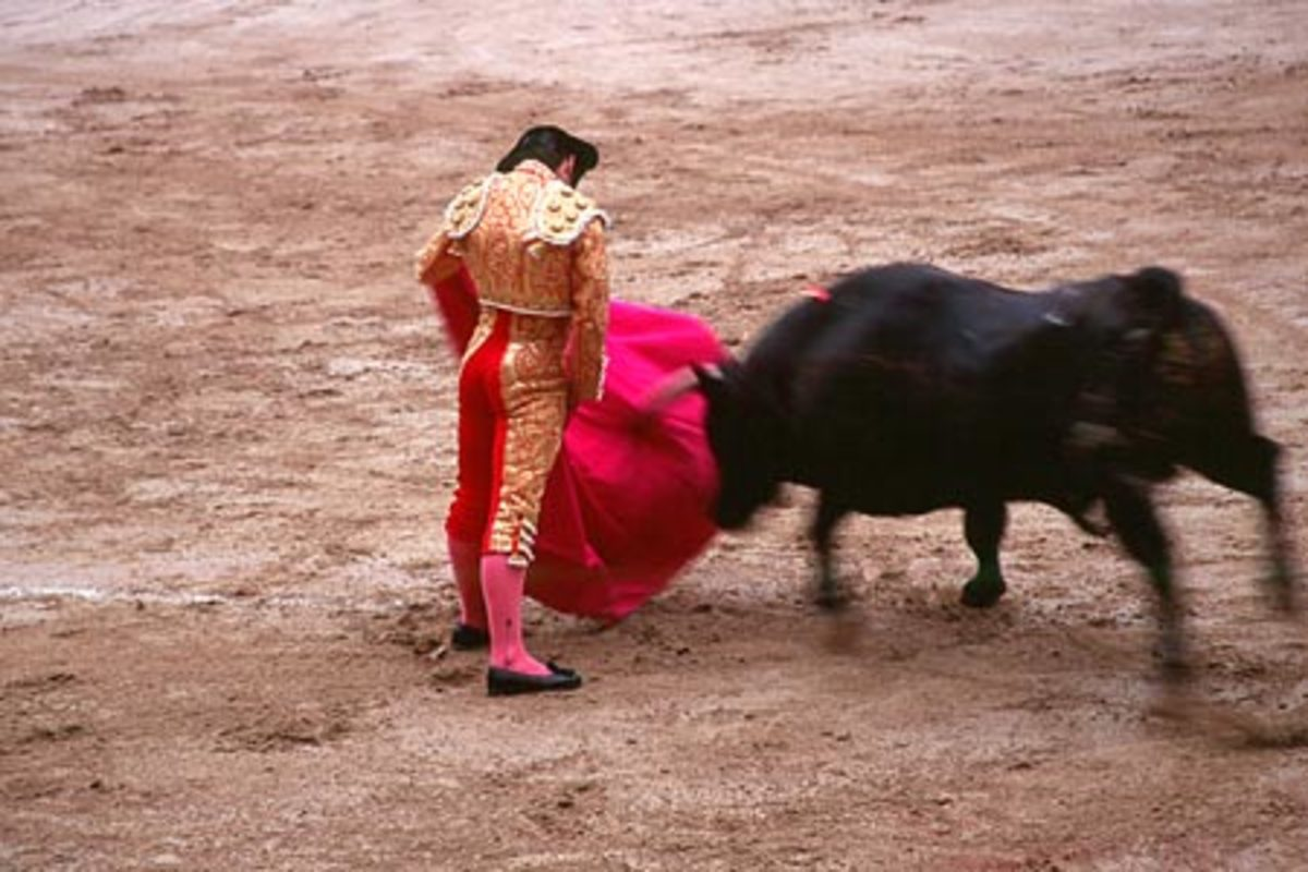 Although bullfighting originated in the southern region of Spain, Andalucia, it is performed all over the country.