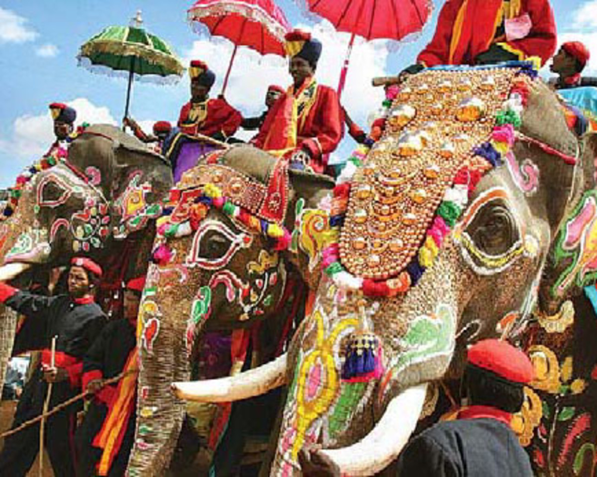 Indian elephants dressed up for a grand ceremony