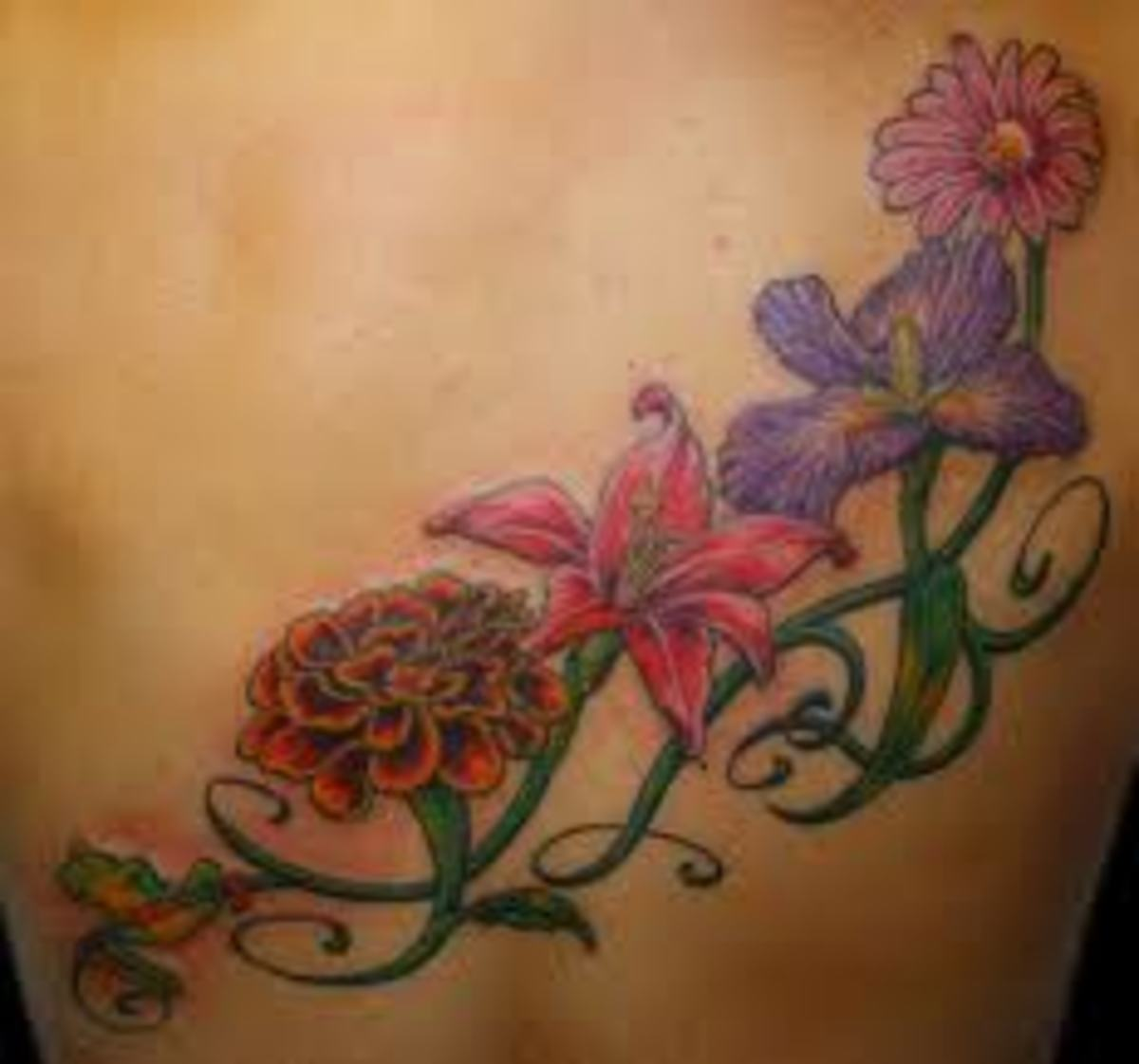 Vine Tattoos And Vine Tattoo Meanings-Vine Tattoo Designs