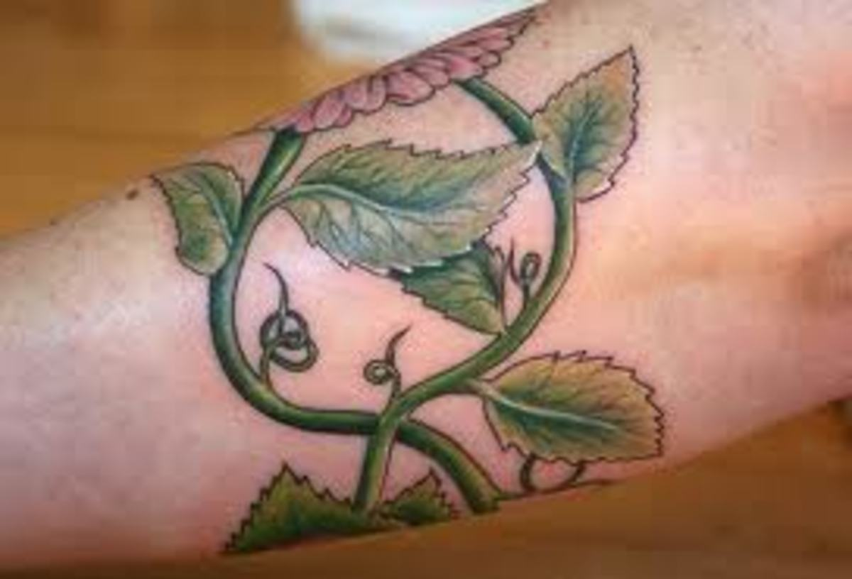 vine-tattoos-and-meanings