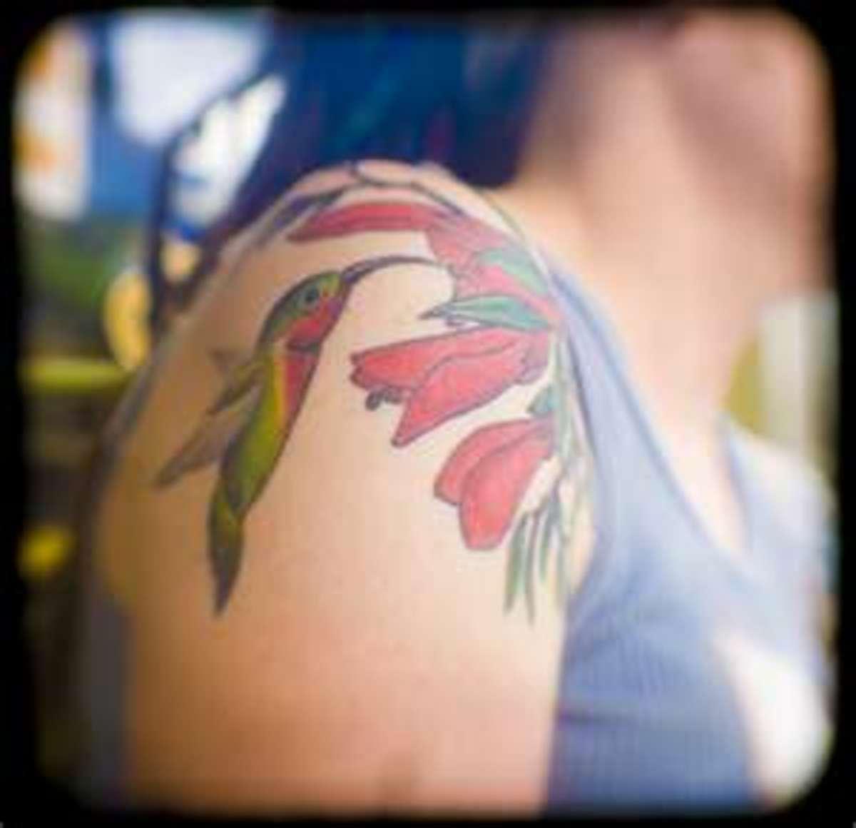 hummingbirdtattoodesignsgalleryphotospictures