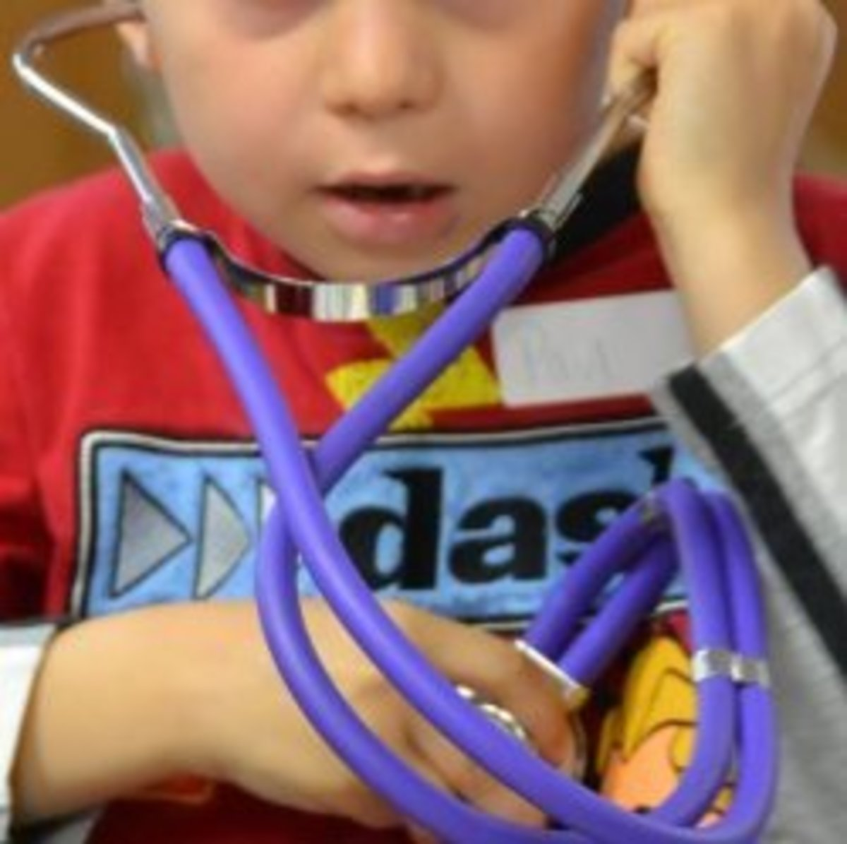 learning-about-the-circulatory-system