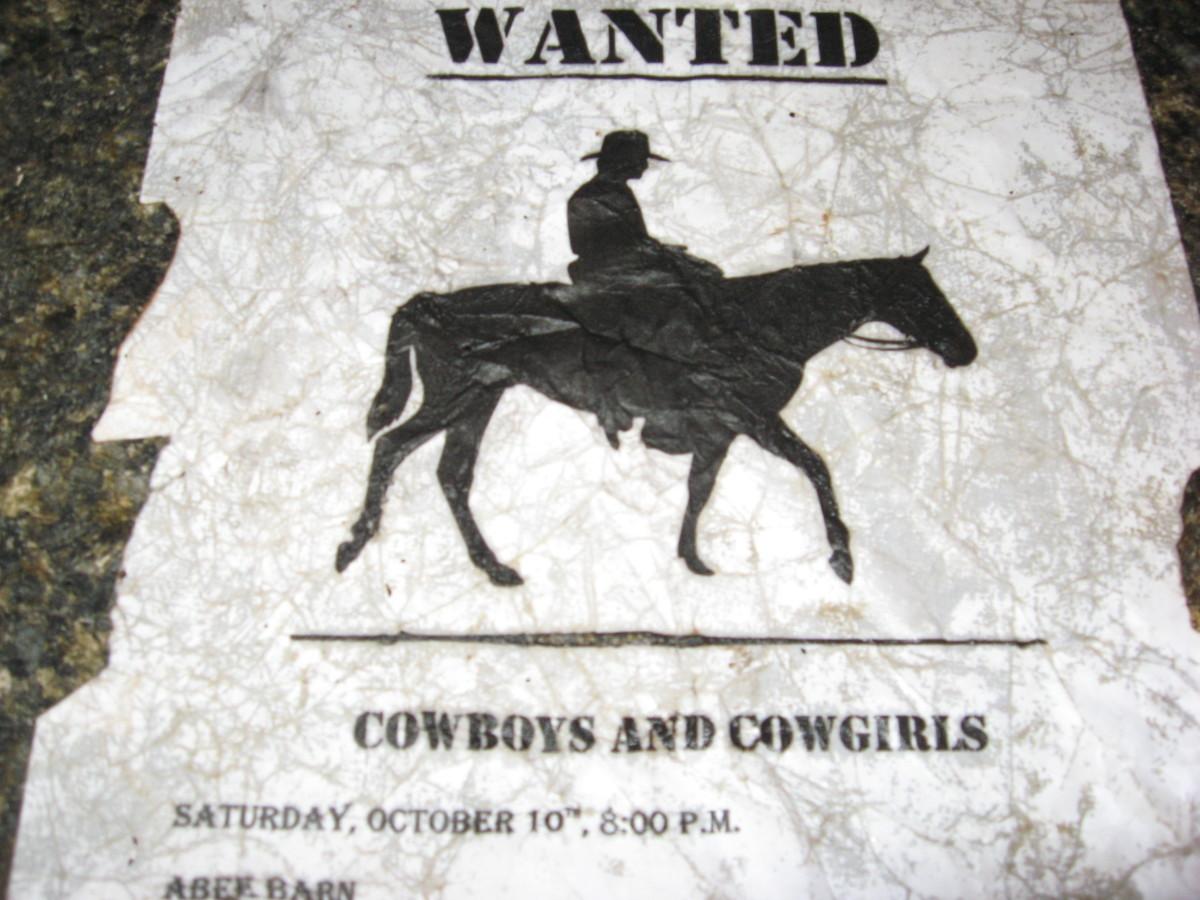 adult-party-ideas-cowboy-party