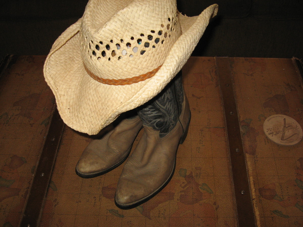 Adult Party Ideas: Cowboy Party