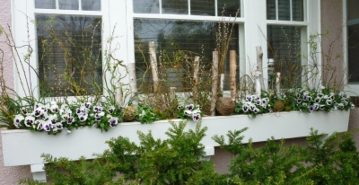 Add Height, Interest and Variety to Liven Up Garden-Variety Window Boxes Using Orbs, Branches and Twigs.  Image:KateHon