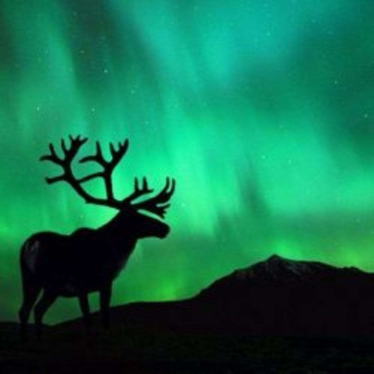 Image credit: http://environment.nationalgeographic.com/environment/photos/arctic-climate-change/