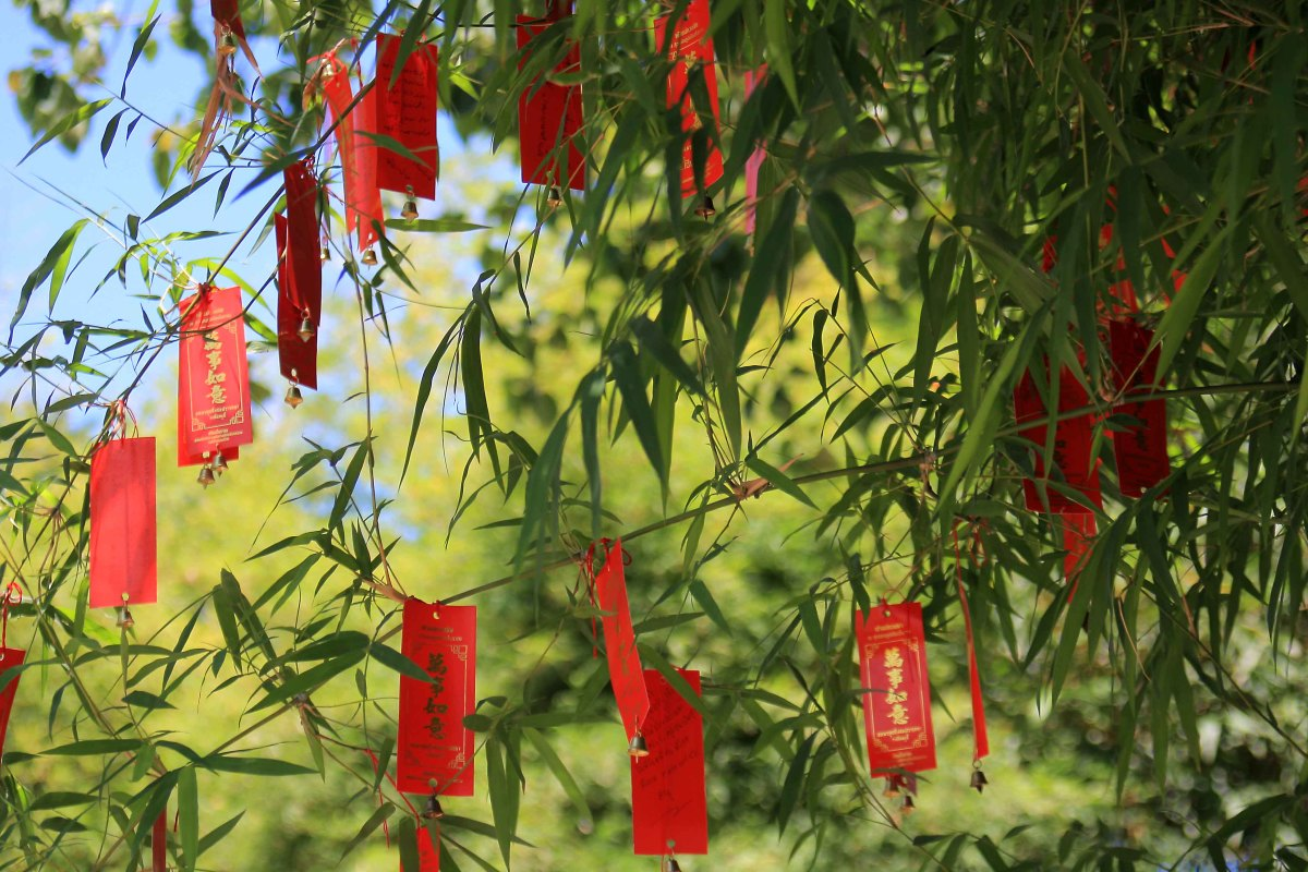 One of the more enchanting sights in the 'Ancient City' are trees laden with little plates, on which are written Thai characters. Bells hang from the plates. These are good luck charms