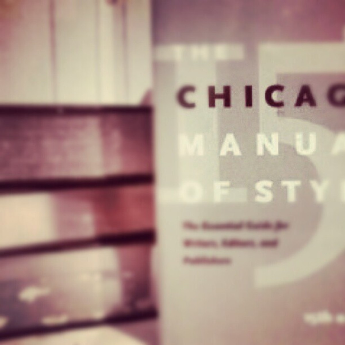 The Chicago Manual of Style is a great resource for writing in the correct format for each of the writing styles of English literature.