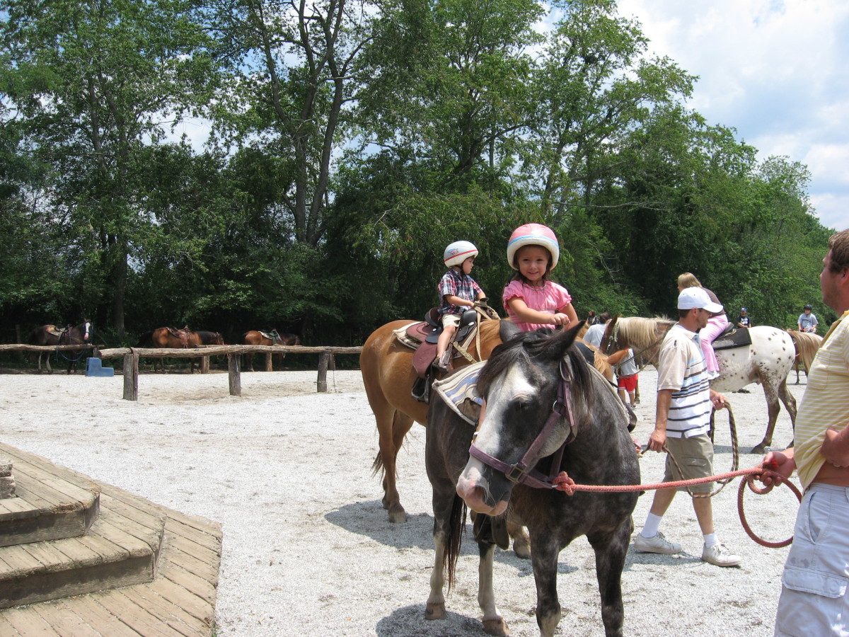 Lexi - yet another horse lover in the family.