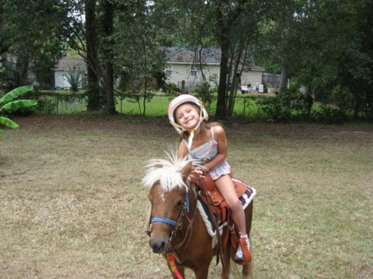 This saddle was a perfect fit for Lexi!