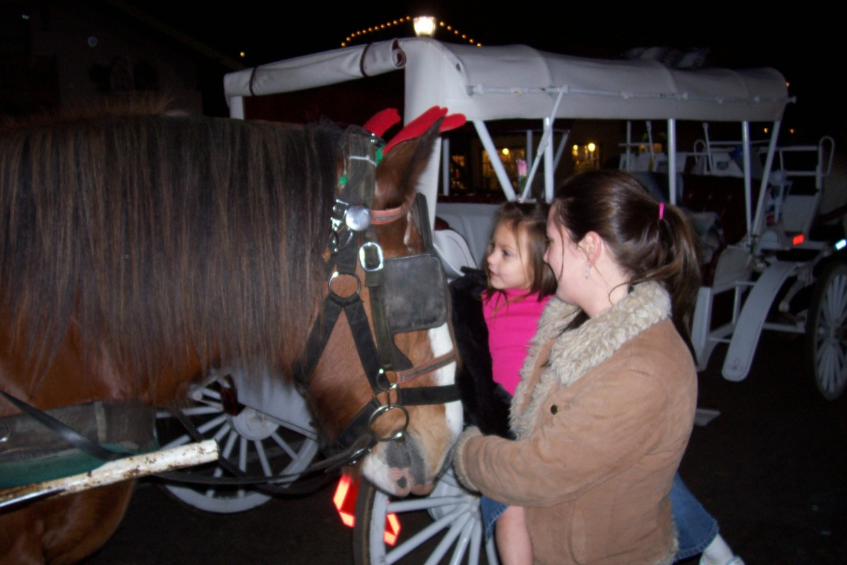Enjoy a carriage ride around town.