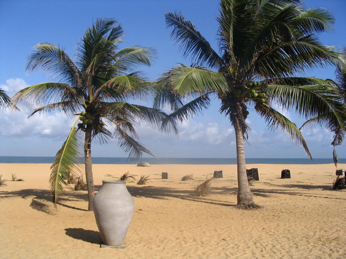 'Licensed under the Creative Commons Attribution 2.0 Generic license'. See: http://commons.wikimedia.org/wiki/File:Negombo_Beach,_Sri_Lanka.jpg