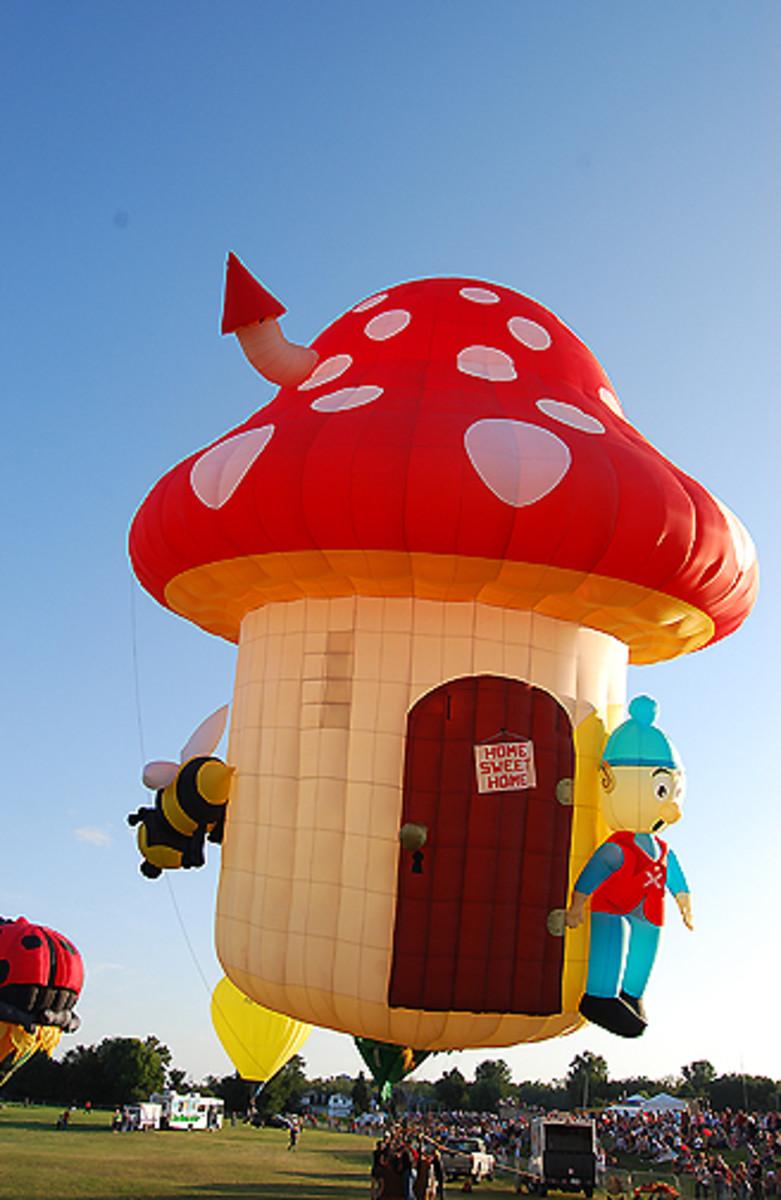 Mushroom House Hot Air Balloon