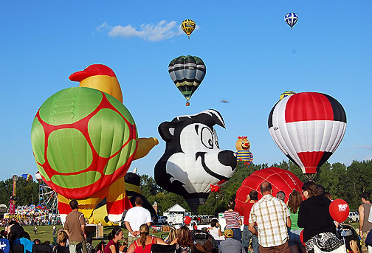 Hot Air Balloons and Skunk Balloon