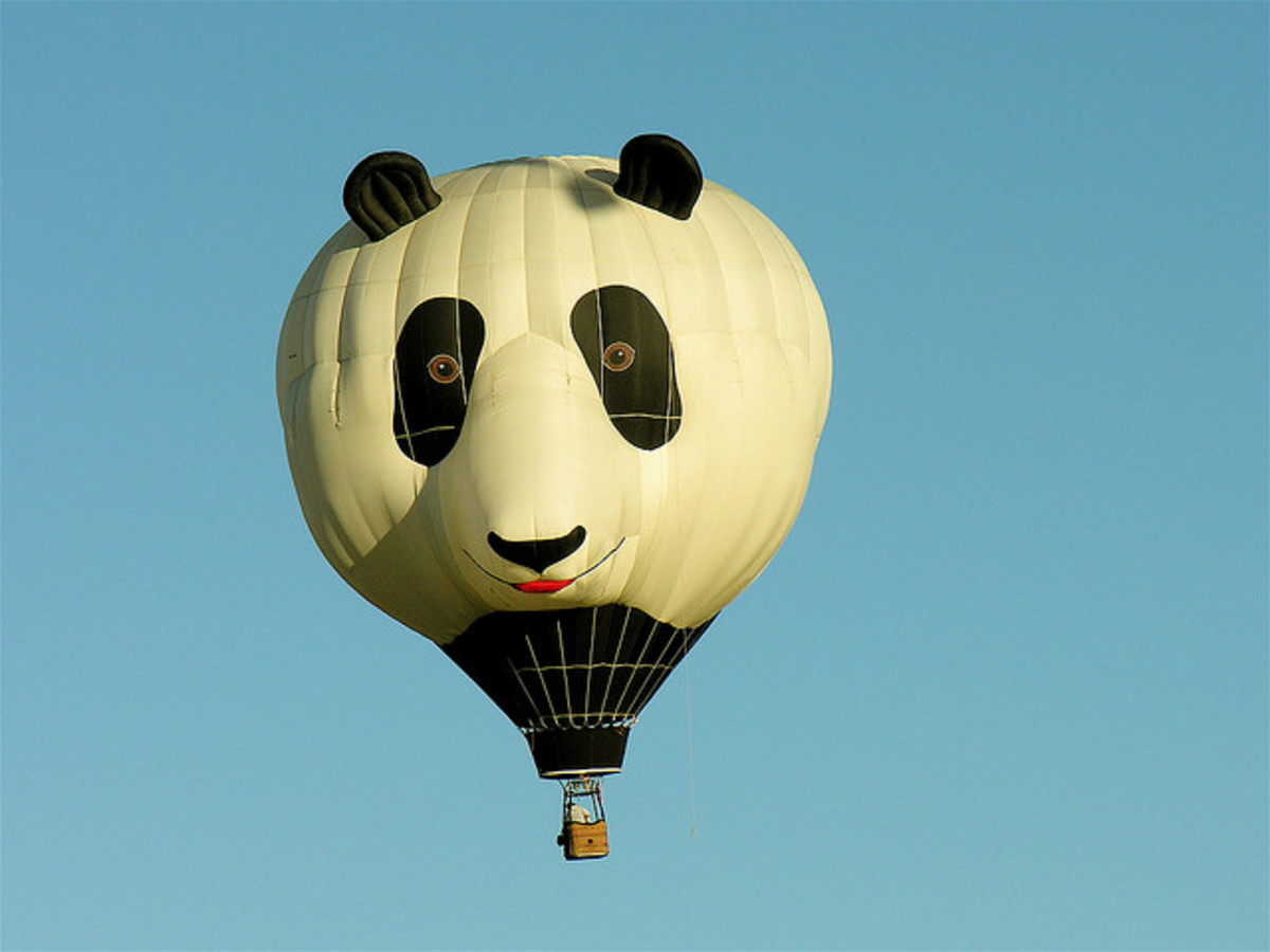 Panda Hot air Balloon