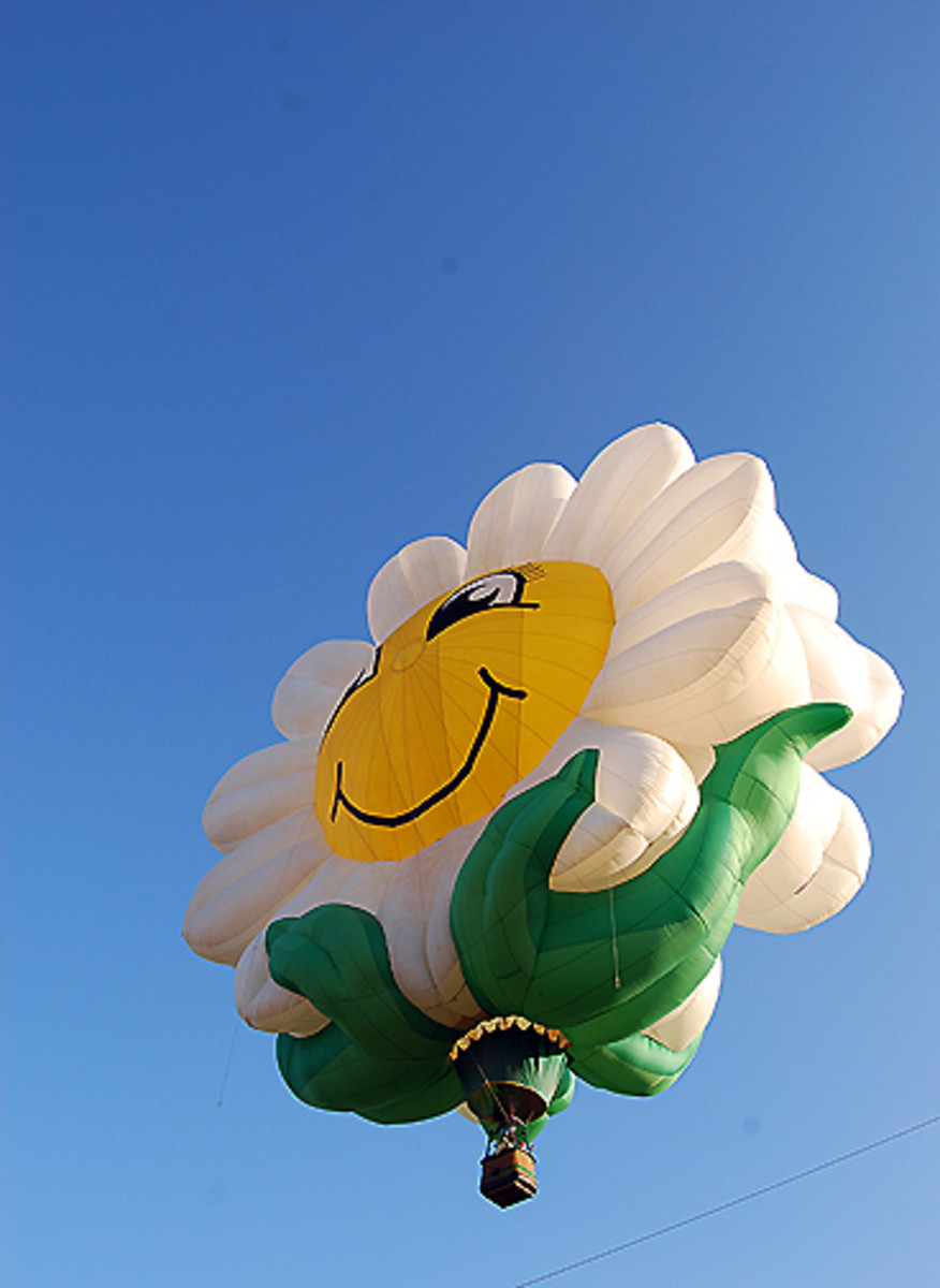 Flower Hot Air Balloon