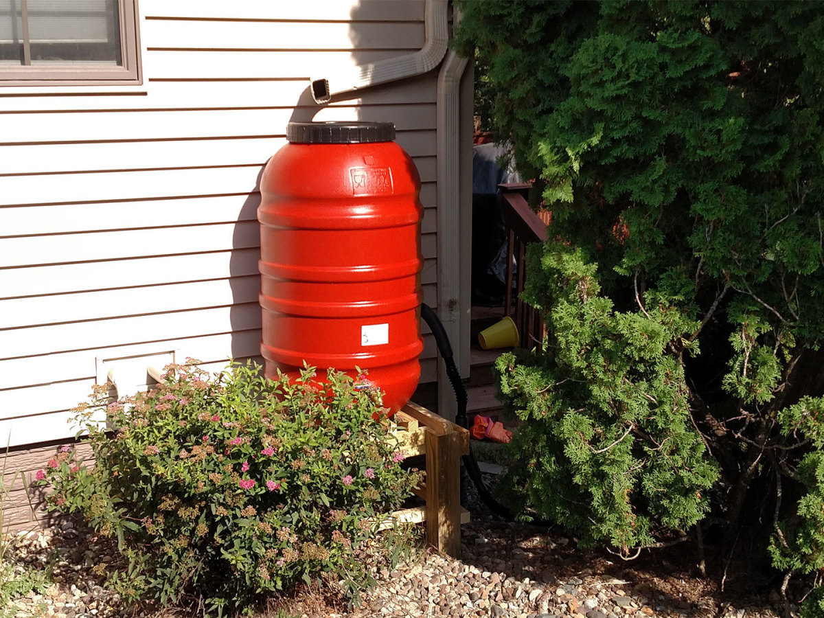 Rain barrels capture water from roofs and garages that can then be used later during dry spells.
