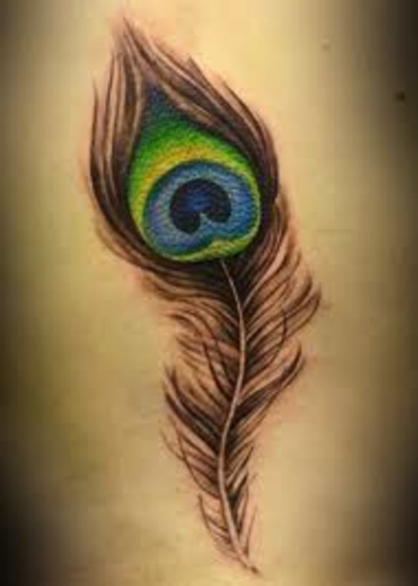 feather-tattoo-gallery-feather-tattoo-designs