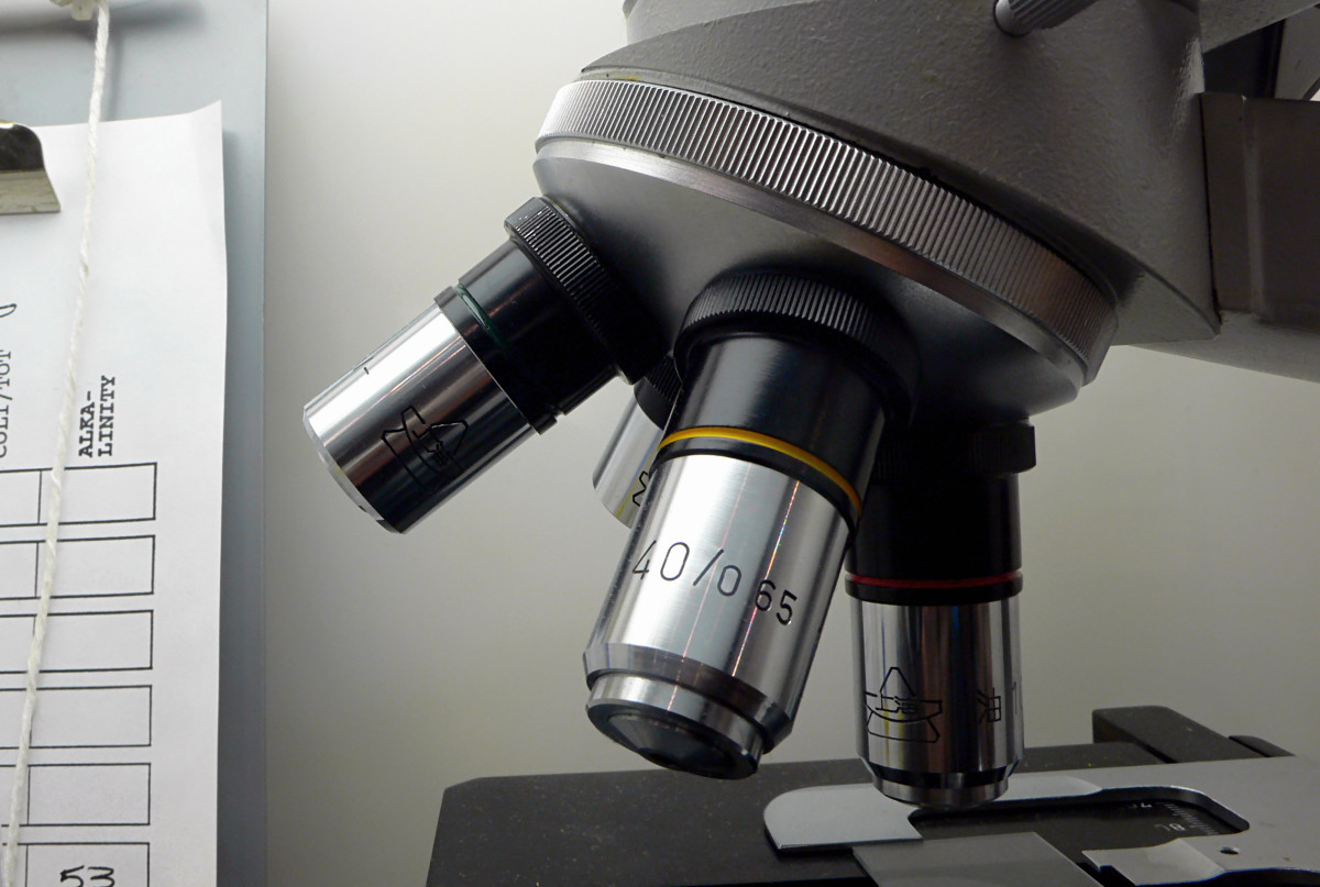 Phlebotomist training could also involve the use of microscope to analyze blood samples.