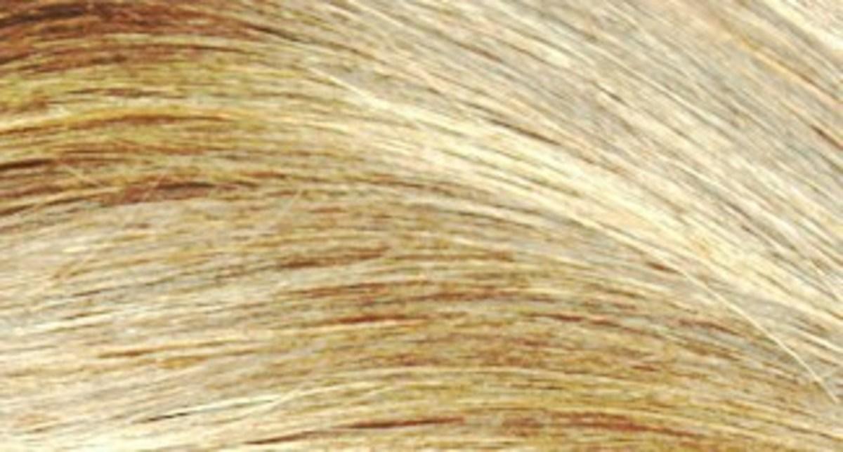Sun-In Hair Lightener Before: Medium Blonde