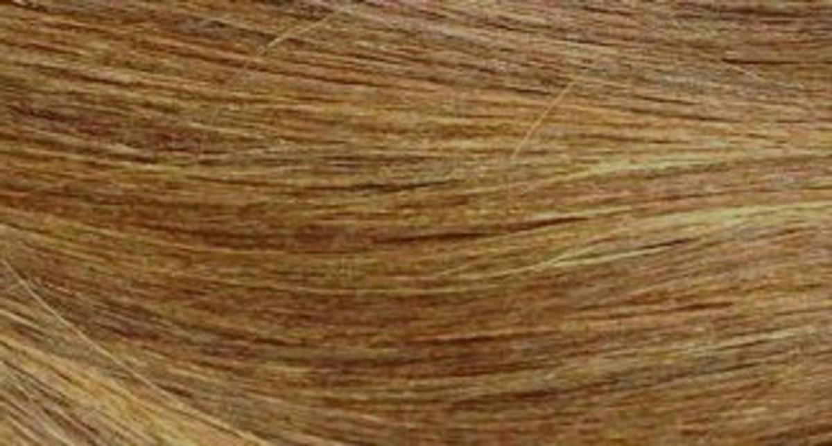 Sun-in Hair Lightener: After, Dark Blonde