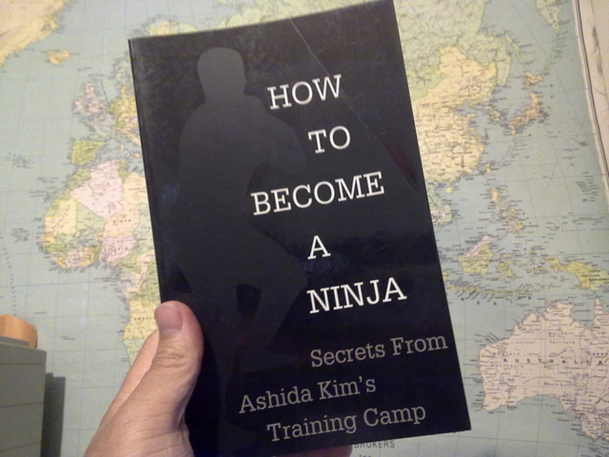 The Pros and Cons of Online Ninjutsu Training