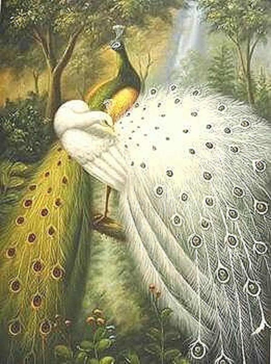 Peacocks painting