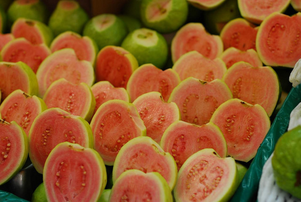 The Health Benefits of Guava Fruit