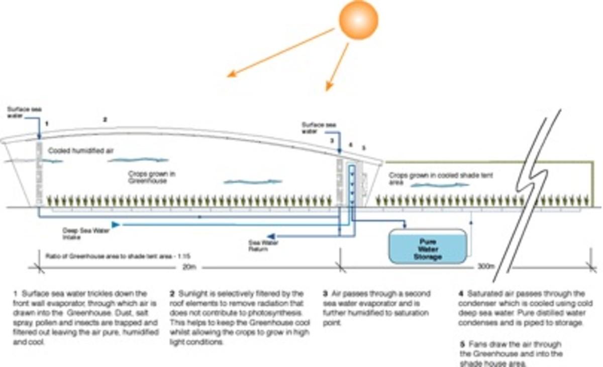 Seawater Greenhouse process diagram.