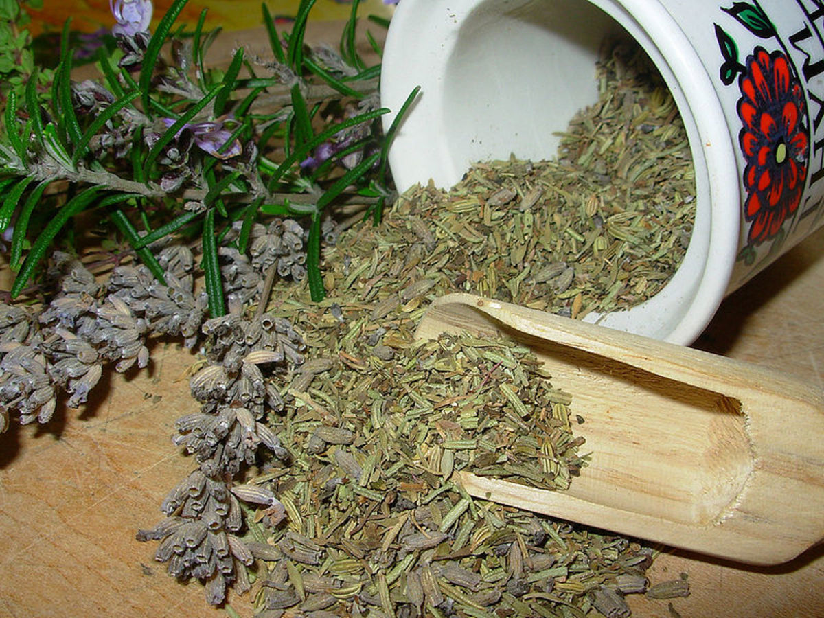 Introduction to Herb Magic and Commonly used Magical Terms