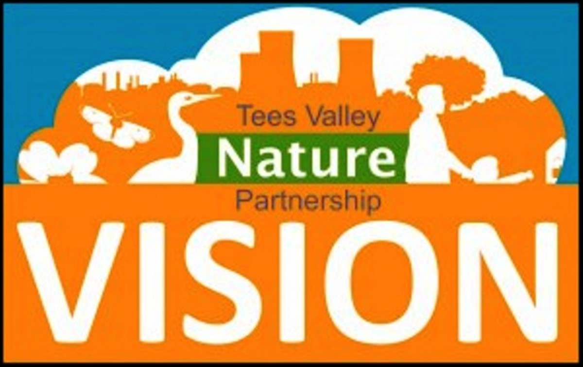Their site can be found on Twitter, @Tees Valley NP