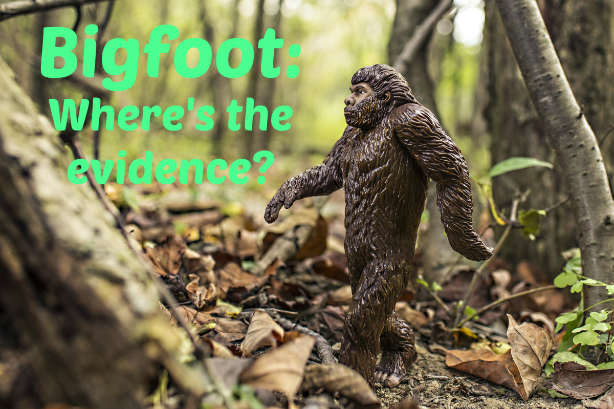 Is There Any Real Bigfoot Evidence?