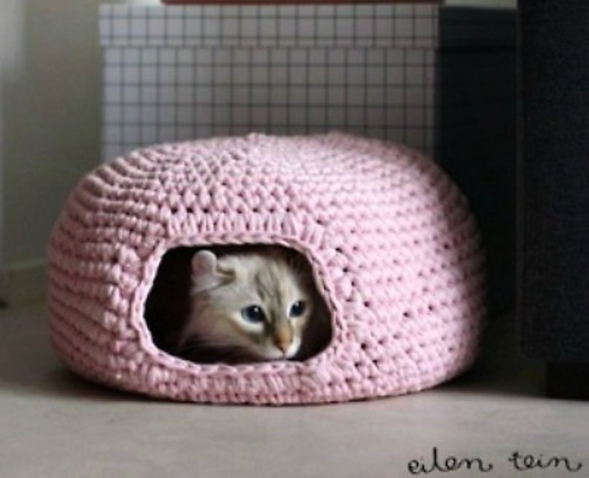27 Spectacular Diy Pet Gift Craft Ideas Hubpages