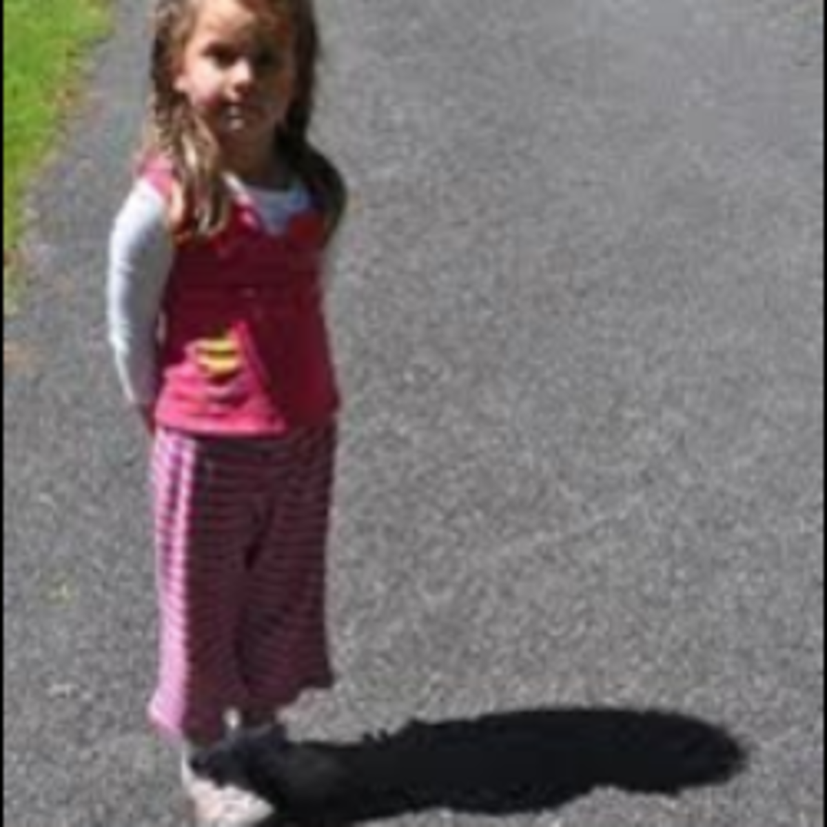 The best time to use a solar oven is when our shadow is shorter than you.