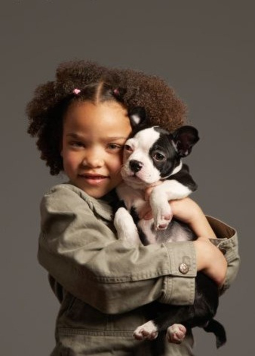When it comes to the very best for your pet or your children, who says what is good and what is bad? And is it anyone's right to control that?