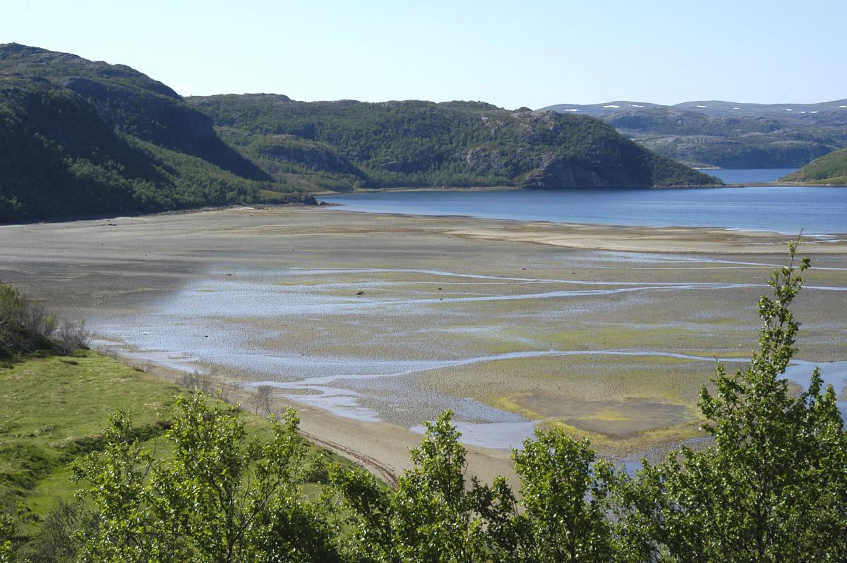 Low tide in Adamsfjord in Lebesby, Norway.