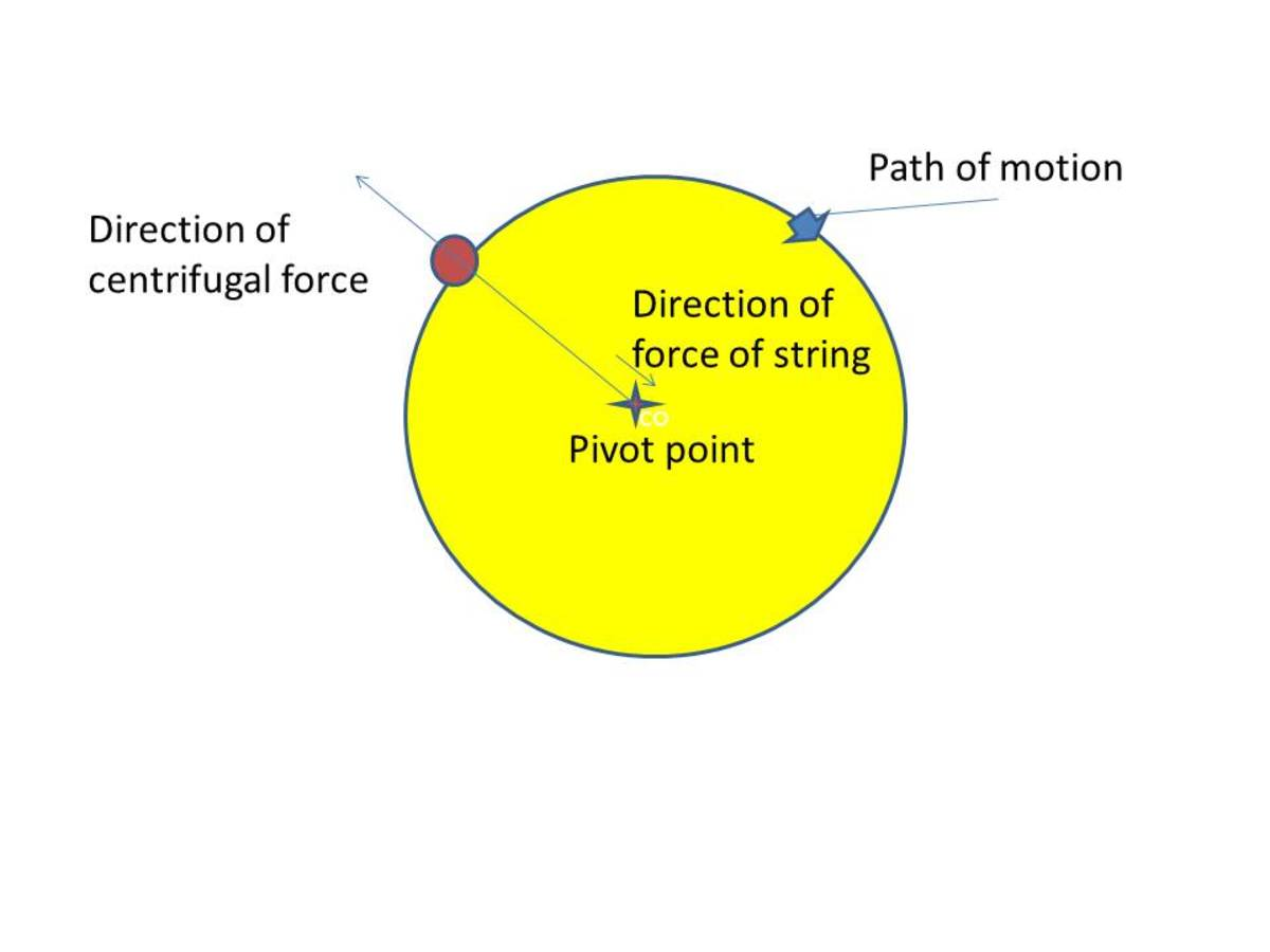 In this example, two forces are working on the ball: one pulling it inward and one pulling it outward.  So, in a similar way the centrifugal force of the earth spinning about the lopsided centre of gravity creates the second ocean bulge.
