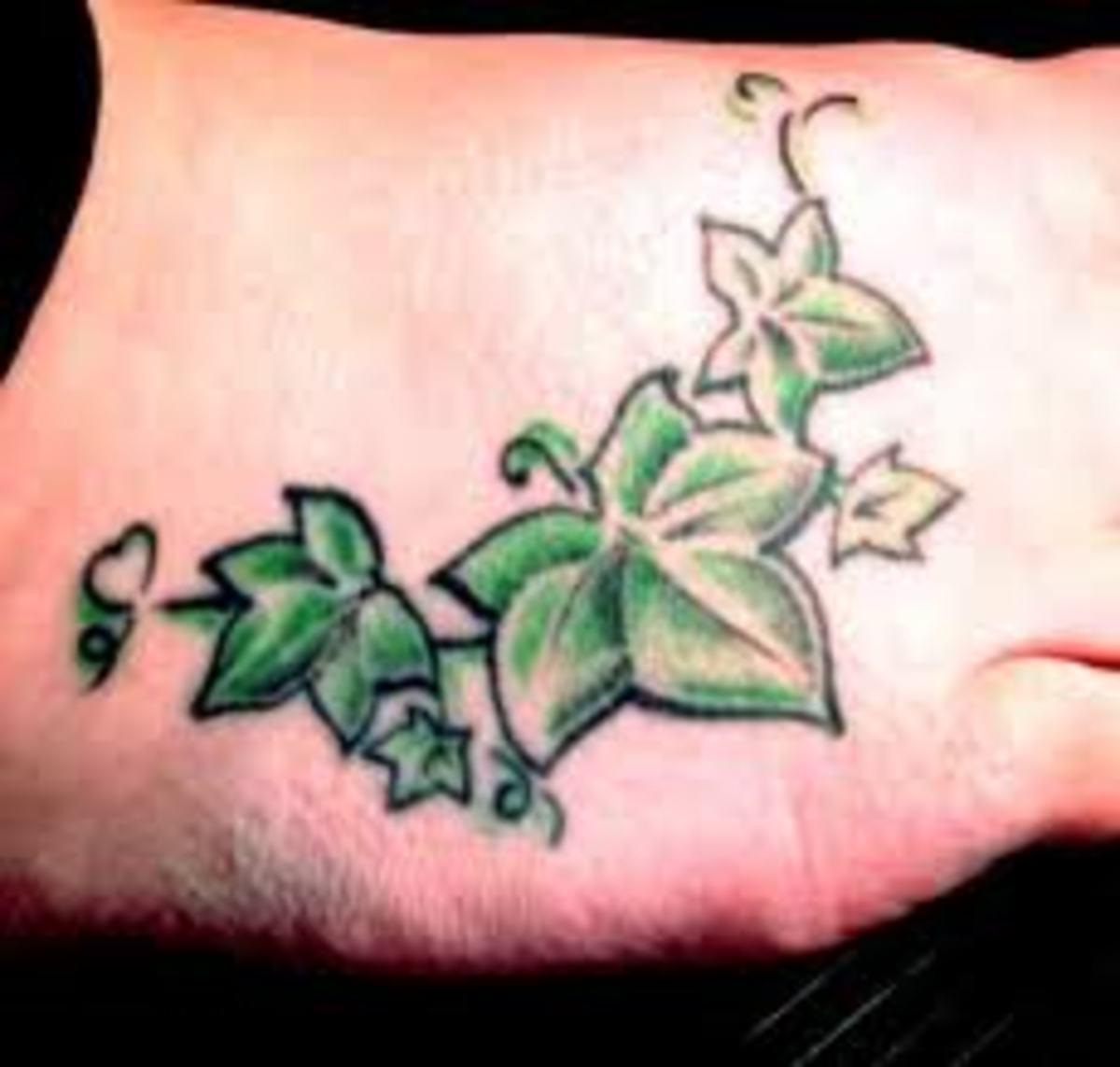 ivy tattoo designs and meanings ivy flower tattoos and vine tattoos hubpages. Black Bedroom Furniture Sets. Home Design Ideas