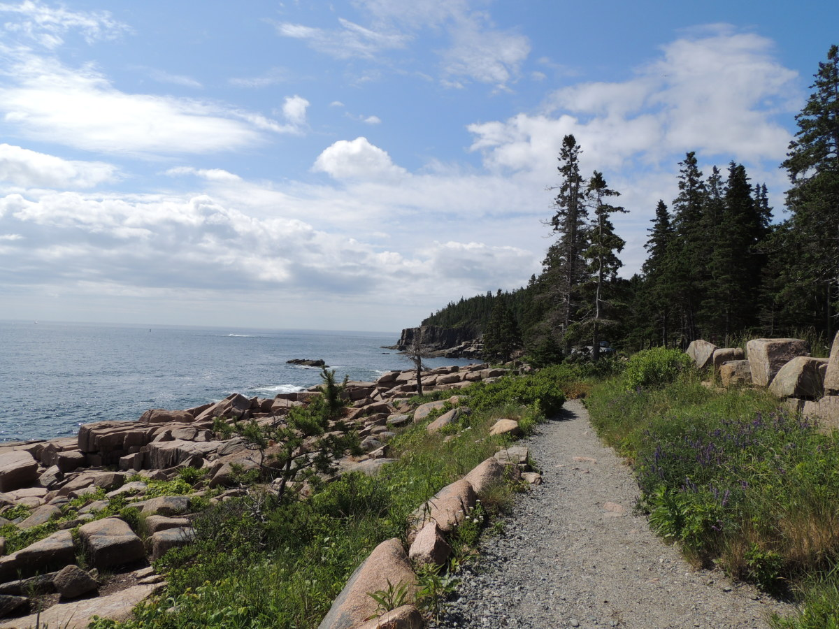 Ocean Shore Trail @ Acadia National Park