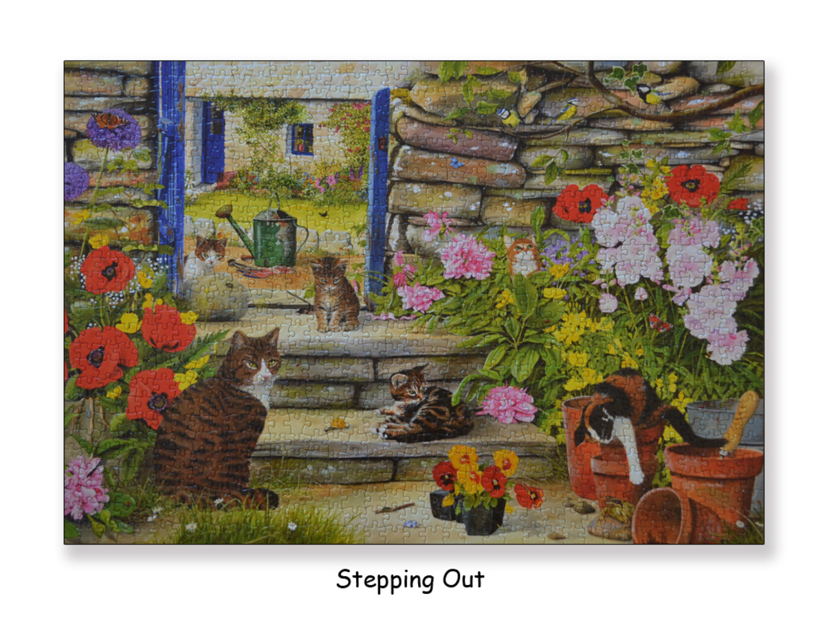 Jigsaw puzzle titled 'Stepping Out' painted by water color artist Tracy Hall :)