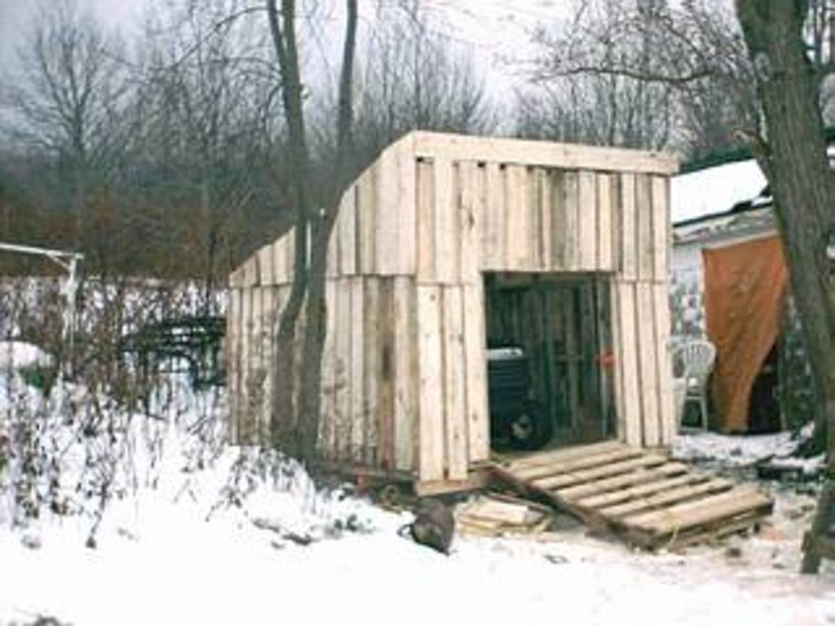 Visit Johns blog to see how he built this shed and get other project ideas with free pallets.