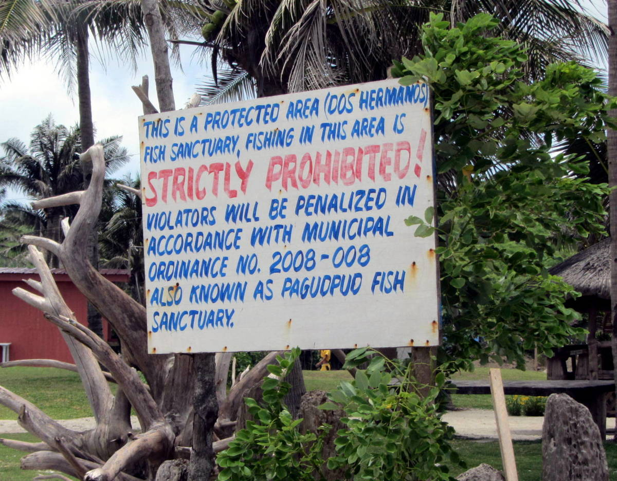a couple of steps away from Kapuluan Vista Resort is the Fish Sanctuary of Dos Hermanos Island