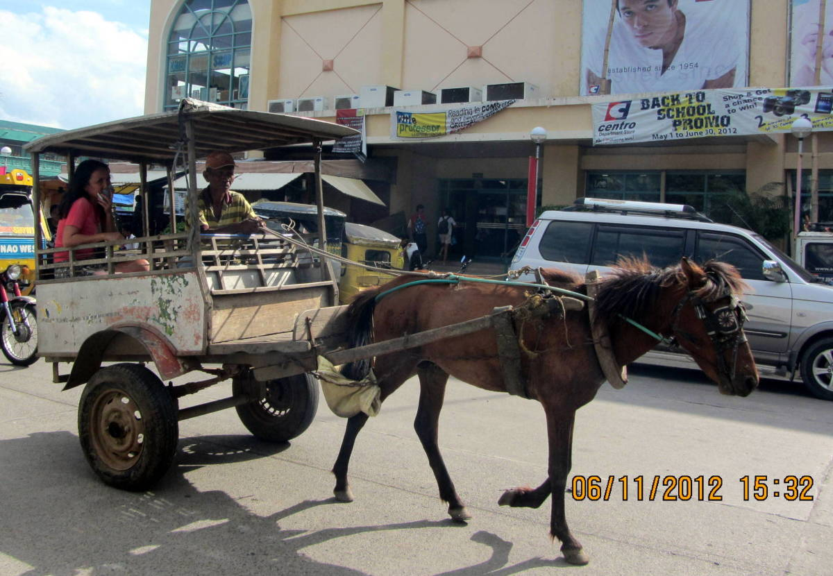 A classic kalesa - or a horse drawn carriage in Tuguegarao. The kalesa is a common transportation in the city
